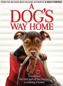 DVD A dogs way home