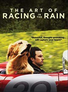 KAREN Art of racing in the rain